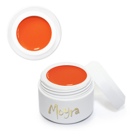 Nail Expert Painting gel 06 Vivid Orange 5 ml