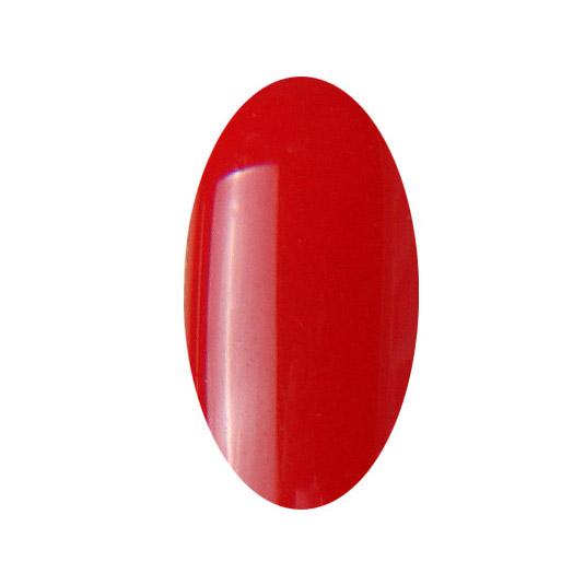 Nail Expert Gellak Vamp 10ml